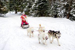 En tur i hundeslæde